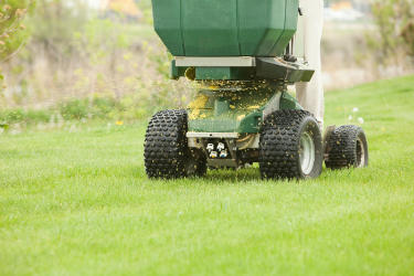 Tips to Consider When Hunting for the Best Pest and Weed Control Professionals in St Johns